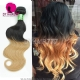 Wholesale 1 Bundle Ombre Hair Extensions Brazilian Standard Body Wave 1B/27 Two Tone Color More Wavy DY Hair