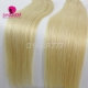 #24 Brazilian Straight Hair Human Hair Extension